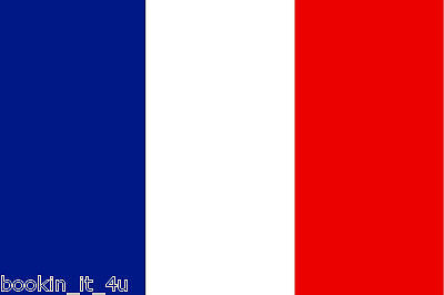 ****france French Vinyl Flag Decal / Sticker****