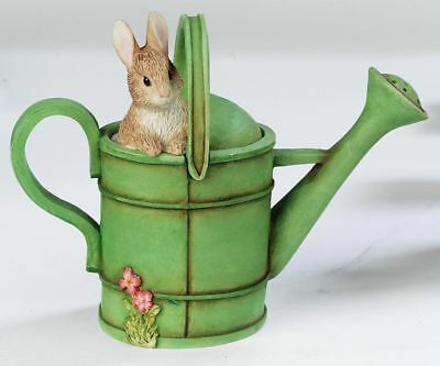 Peter Rabbit in watering can Trinket Box NEW 13126