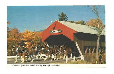 JACKSON NH Clydesdale Horses Covered Bridge Vtg 1974 PC