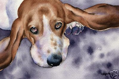 BASSET HOUND Painting Art Print 11 X 14 Signed by Watercolor Artist DJ Rogers