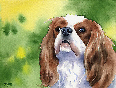 CAVALIER KING CHARLES Painting Dog ART 11 X 14 DJR