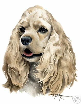COCKER SPANIEL Dog ART 11 X 14 ART Print Signed  DJR