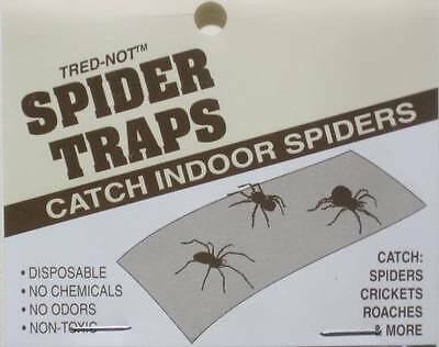 4 Trednot Spider Traps / Sticky  Insect Traps