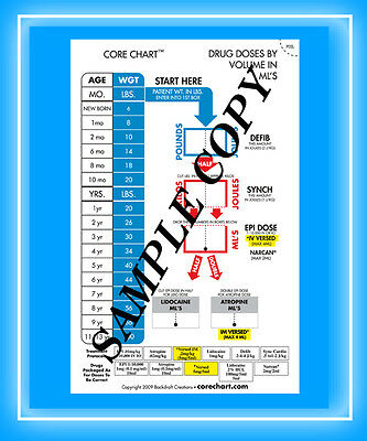 CORECHART   3x5 Pocket Card      Package of 25 Cards