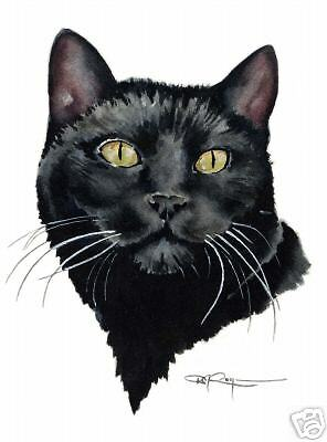 BLACK CAT Painting Watercolor 8 x 10 ART Print Signed by Artist DJR