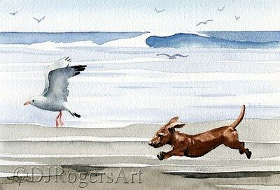 DACHSHUND BEACH Watercolor Dog 8 x 10 ART Print Signed DJR