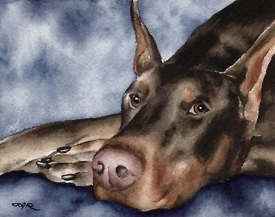 RED DOBERMAN Watercolor DOG 8 x 10 Art Print by Artist DJR