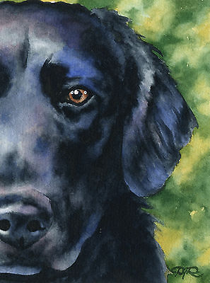 FLAT COATED RETRIEVER Dog Watercolor 8 x 10 ART Print Signed by Artist DJR