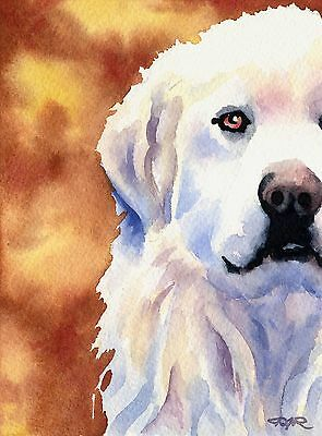 GREAT PYRENEES Watercolor 8 x 10 ART Print Signed by Artist DJR