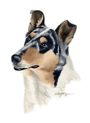 SMOOTH COLLIE Watercolor 8 x 10 ART Print DOG Signed by Artist DJR