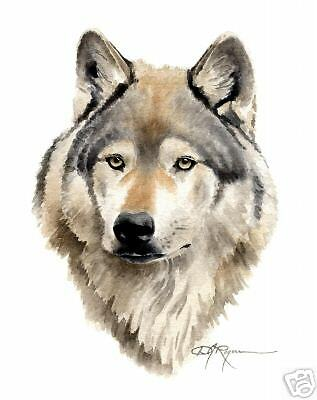 WOLF Watercolor Painting 8 x 10 ART Print Signed by Artist DJ Rogers