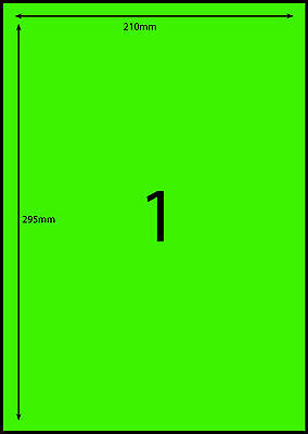 A4 Labels Avery Compatible 100 sheets-FLUORO GREEN-1 label page **DL RANGE