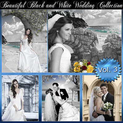 Digital Backgrounds Photography Backdrops Green Screen BLACK AND WHITE WEDDING 3