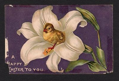 Tuck's Happy Easter Postcard Chick inside Lily, 1908, Purple Background