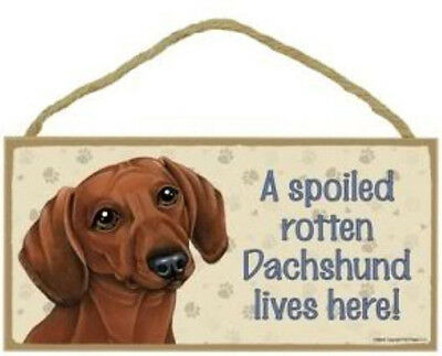 """Spoiled Rotten Dachshund Lives Here Sign Plaque Dog  Red 10"""" x 5"""""""