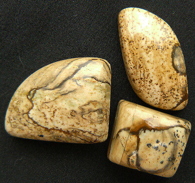 Picture Jasper Cabochons Natural Gemstone 3-cnt.47cts. total