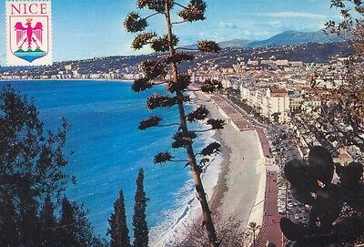 06 - cpsm - NICE