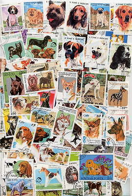 Superb Collection Of 200 Dogs - All Different- All Colorful Large Pictorials!