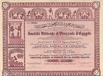 EGYPT VINEYARD & WINERY stock certificate CAIRO