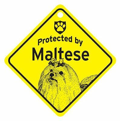Protected by Maltese Dog Car Window Sign