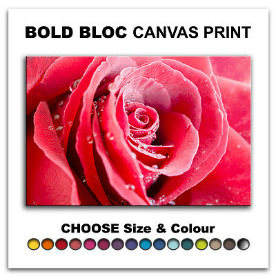 Roses Flowers Love FLORAL  Canvas Art Print Box Framed Picture Wall Hanging BBD