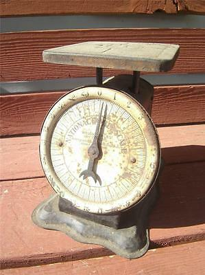 Vintage 1913 National Family Coffee & Tea Scale 24 Lbs Pounds Store St. Louis