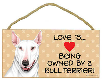 """Love Being Owned by a  Bull Terrier White  Sign Plaque 10"""" x 5"""" Gift"""