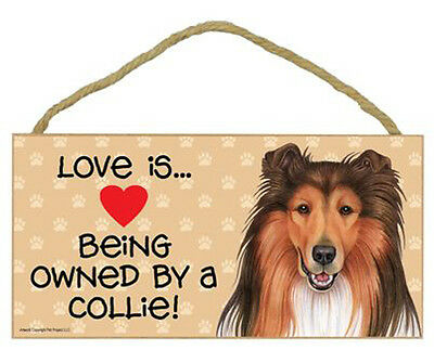 """Love is Being Owned by a Collie Sign Plaque dog  10"""" x 5"""" gifts pet"""