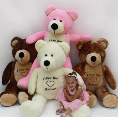 Giant Large Big Xxl Teddy Bear Brown/ White/ Cream 165/145 Cm  Free Delivery!
