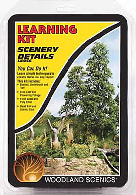 NEW Woodland Scenics Scenery Details Learning Kit LK956