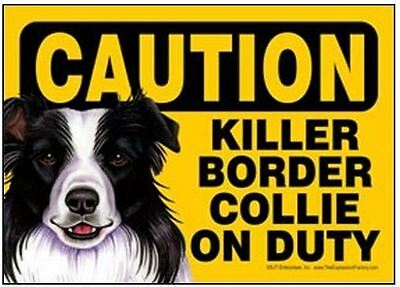 "Funny Dog Sign Caution Killer BORDER COLLIE on Duty magnet 5"" x 7"""