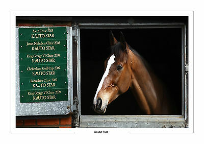 Kauto Star In Stable With Honours A4 Photo Print A4 Free P+P Horse Racing