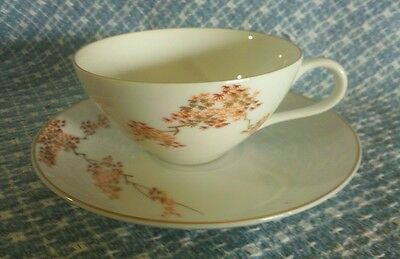 Handpainted Fukagawa Arita Maple motif tea cup & saucer, #905