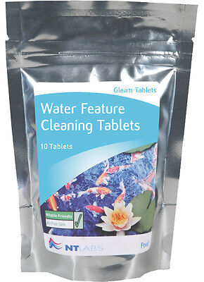 NT Labs Gleam Feature Clean 10 Tabs - Water feature cleaner for Algae