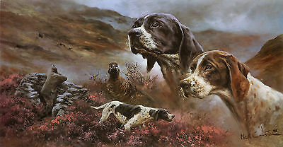POINTER ENGLISH GUN DOG FINE ART LIMITED EDITION PRINT  by the Late Mick Cawston