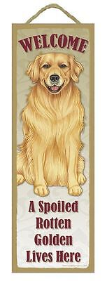 "Spoiled Rotten Golden Retiever Lives Here Sign 5"" x 15"" Plaque Gift pet dog"