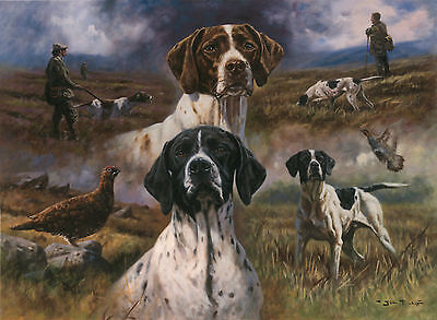 "POINTER ENGLISH DOG FINE ART LIMITED EDITION PRINT ""Point Perfect"" John Trickett"