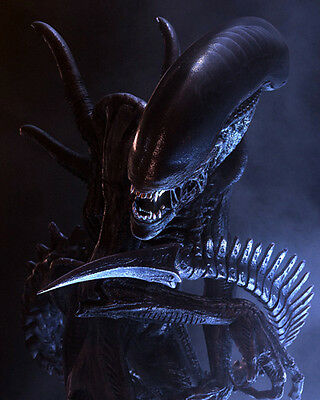 Alien vs Predator [Cast] (8982) 8x10 Photo