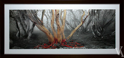 Ken Duncan Framed & Signed Scenic Signature Series