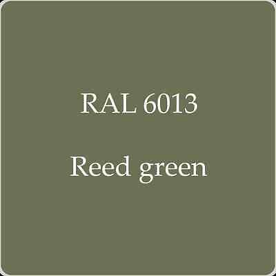 Ral 6013 High Quality German Paint   Reed Green 2L With Free Strainer