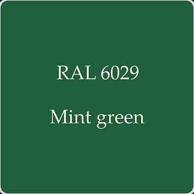 Ral 6029 High Quality German Paint   Mint Green 2L With Free Strainer