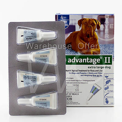 Advantage II For Large Dogs Over 55 Lbs 4 Month Supply Pack 55+ Bayer