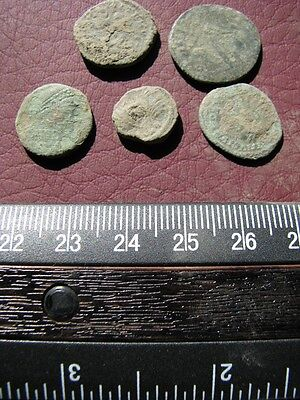 5 Ancient Roman coins + 4 oz. Mint State Restoration Coin Cleaner M170