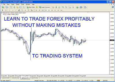Professional Forex System 1 hr/15 min charts  - 2 x  PDF strategy template