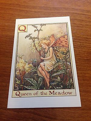 Cicely Mary Barker Flower Fairy Postcard - Queen of the Meadow Fairy - NEW