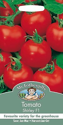 Mr Fothergills - Pictorial Packet - Vegetable - Tomato Shirley F1 - 8 Seeds