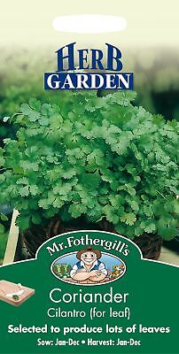 Mr Fothergills - Pictorial Packet - Herb - Coriander Cilantro - 150 Seeds