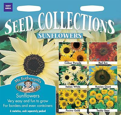 Mr Fothergills -Flower - Sunflower Collection - 6 types Seeds