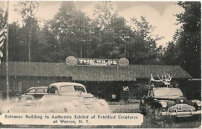 The Wilds Petrified Creatures Exhibit Warren NY Roadside Postcard