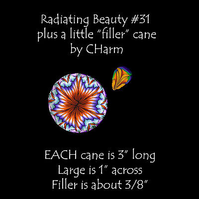 """2 Polymer clay canes Radiating Beauty and a Filler cane EACH 3"""" L by CHarm #31"""